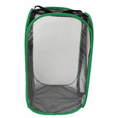 EE_ QA_ 30cm Collapsible Insect Butterfly Insects Habitat Net Terrarium Breeding