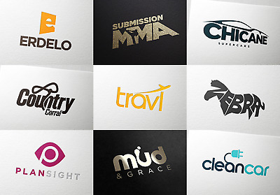 Custom Logo Design + Logo Redesign + Vector logo design