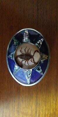 Scorpion Belt Buckle w/ Silver Abalone inlay stamped Taxco Mexico Taxidermy