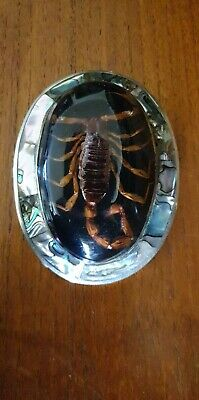 Silver Abalone Scorpion Belt Buckle stamped Mexico