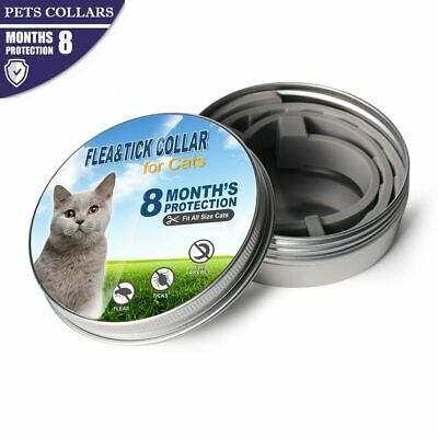 Dog Cat Pet Collar Anti Flea Tick Mosquitoes Insect for Small Medium Large pet