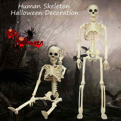 Plastic Jointed Full Life Size Human Skeleton Halloween Party Prop Decoration