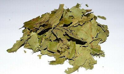 Dried Caapi Leaves 1 oz - Banisteriopsis Caapi (Known as ayahuasca)