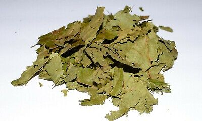 Dried Caapi Leaves 114 grams (1/4 lb) Banisteriopsis Caapi (Known as ayahuasca)