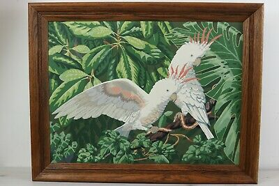 """Vintage Paint by Numbers Cockatiel Bird Finished Painting Art Framed 28""""x22"""" PBN"""