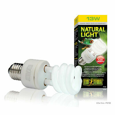 Exo Terra Natural Light Full Spectrum Daylight Bulb - 13W