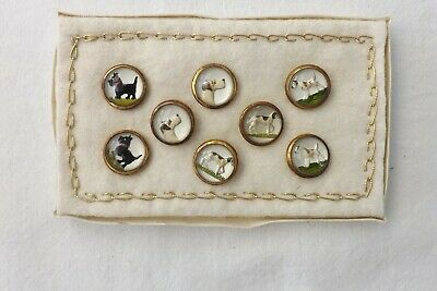 Set Of Eight Antique Glass Intaglio Buttons Dog Studies 1.5Cms (1158)