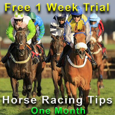 Horse Racing Tips Tipster Service Betting Make Money Online Betfair 1 Month