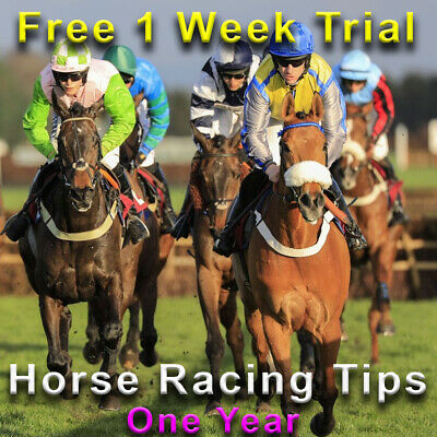 Horse Racing Tips Tipster Service Betting Make Money Online Betfair One Year
