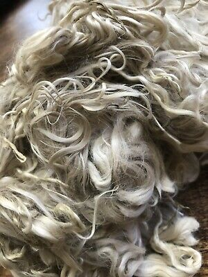 Raw Suri Alpaca Locks Fibre Wool White - 100gm - Unwashed - Spinning Felting
