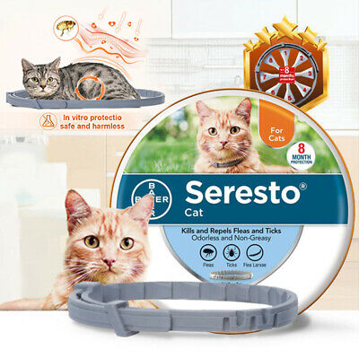 Bayer Seresto Flea And Tick Collar For Cat All Weights 8 Month Protection