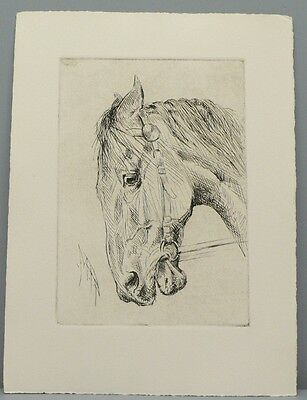George Ford Morris Estate Artist Proof Lithograph of an Angry Mare