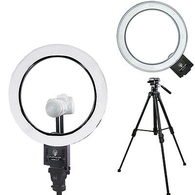 """Diva Ring Light Nebula 18"""" Dimmable LED ring light with Tripod"""