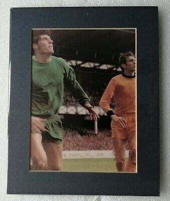 PHIL PARKES WOLVES WWFC SIGNED MOUNTED DISPLAY 10x8 COA AUTOGRAPH CIRCA 1970