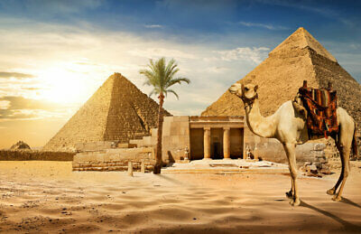 Canvas Art Wall Print Painting Egyptian pyramid Landscape Living Room Home Decor