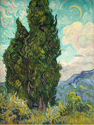 Vincent Van Gogh Two Cypress Trees Canvas Art Print Painting Decor/022 12x16inch