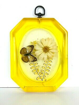 Vintage 60's Pressed Flower Pressed Butterfly Resin/Lucite Wall Hanging