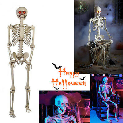 5' Life Size Jointed Skeleton Halloween Spooky Decor Prop Haunted House Skeleton