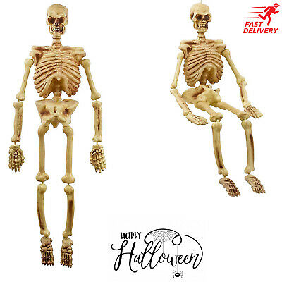 5' Life Size Jointed Halloween Skeleton Spooky Decor Prop Outdoor Haunted House