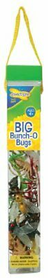 Insect Ligne - Big Bunch O' Bugs