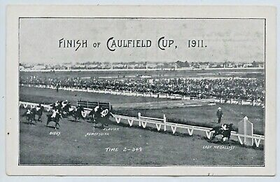 "1911 Npu Postcard Caulfield Cup Won By ""Lady Medalist"" Horse Racing Victoria F52"