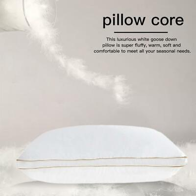 Goose Duck Down Feather Pillows Euro Pillows Custom Luxury Pillow for Home Hotel