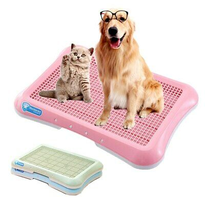Potty Pad Pet Poop Indoor Large Dog Toilet For Dogs Pet Urinal And Potty Golden