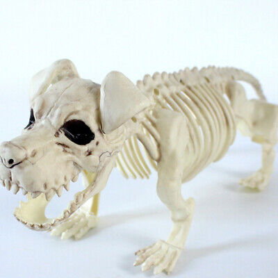 1PC Halloween Decor Prop Animal Plastic Simulation Bone Skull Ornament for Party
