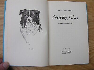 1957 SHEEPDOG GLORY Roy Saunders Country Book Club Hardback Toss Border Collie