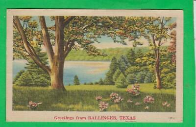 Postcard ~ Lake flowers, trees, greetings from Ballinger Texas ~ Vintage 9072