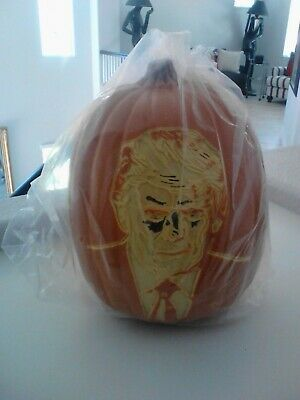Halloween Orange Plastic Donald Trump Light up Pumpkin