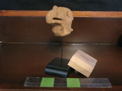 Pre Columbian, H2O2 Tested, Pottery, Choice Authentic Raptor Shard, 100 300 A.D.