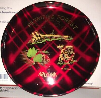 Vintage Arizona Petrified Forest Collector Plastic Tray Plate