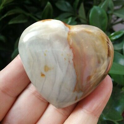 97g Natural Energy Stone Sea Stone Ancient Rock Specimen Heart-shaped