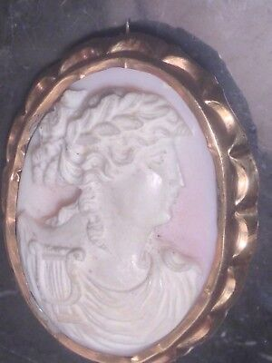 Victorian Greco-Roman Motif Carved Pink Conch Shell Cameo Pin Brooch