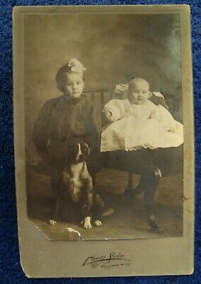 Vintage Cabinet Photo Of Little Girl, Baby & Their Dog - Chaney, Bessemer, Mich.