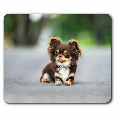 Chihuahua Computer Mouse Mat Christmas Gift Idea AD-CH6M