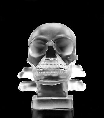Art Deco Bohemian Glass Car Mascot Hood Ornament ' Skull ' Sculpture H.Hoffmann