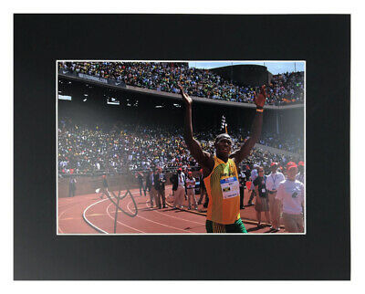 Autographed Usain Bolt Display - Fastest Man Alive +COA