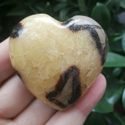 105.9g Natural Energy Stone Turtle Ancient Rock Specimen Heart-shaped