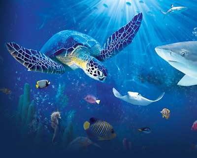 2 FREE tickets to the SEA LIFE Aquarium of your choice (excluding London)