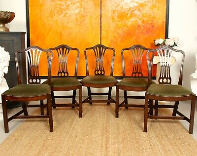 5 Antique Hepplewhite Mahogany Dining Chairs 19th Century Victorian
