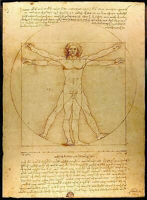 Vitruvian Man Leonardo da Vinci Movie Poster Canvas Picture Art Wall Decore