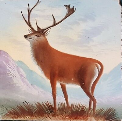 """Unusual Original Antique Naive Style Tile. Handpainted Victorian Stag 6"""" x 6"""""""