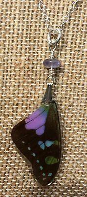Real Purple Graphium Butterfly Wing STERLING SILVER Pendant & Necklace Set
