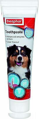 Beaphar Toothpaste for Dogs And Cats, 100g