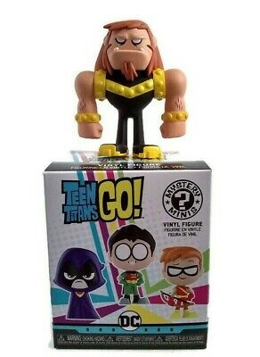 FUNKO MYSTERY MINIS Teen Titans GO! Brother Blood 1/36