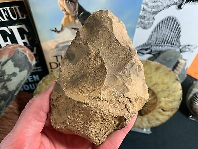 Palaeolithic Hand Axe (Draa Valley, Morocco) #07 - Early Human, Acheulean Tool