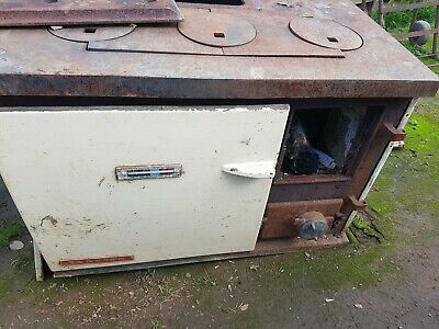 Combustion Wood Stove clayton