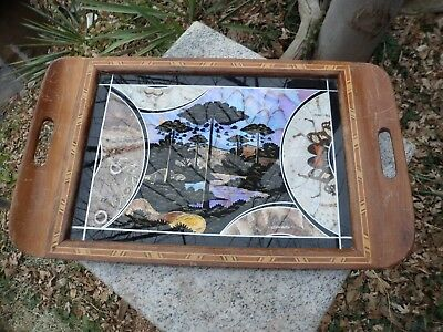 """Marquetry Brazilian Real Butterfly Wing Art Serving Wood Tray Inlay Border 18"""""""